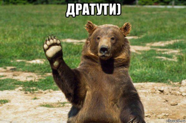 medved-preved_120042563_orig_-600x397