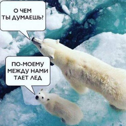 Между нами тает лёд мем