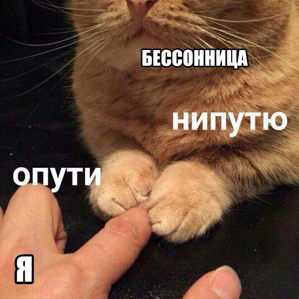 пути непутю мем, мемы опути непутю, опути нипутю, опути нипутю мем, мемы опути нипутю