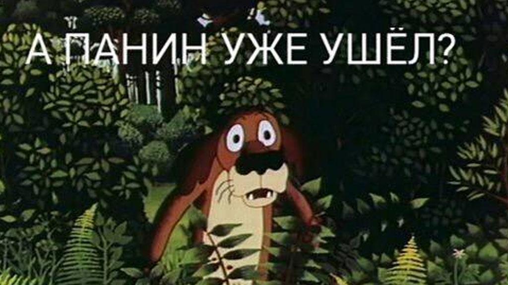 Мемы про Алексея Панина и собаку - сюжет на НТВ