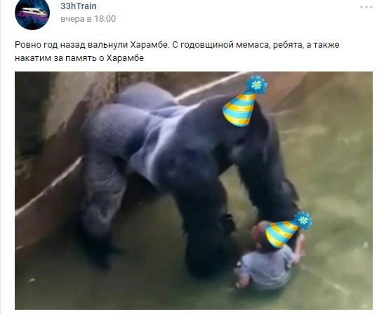 харамбе россия