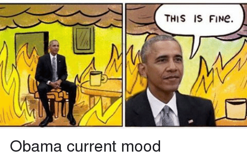 this-is-fine-obama-current-mood-6746355