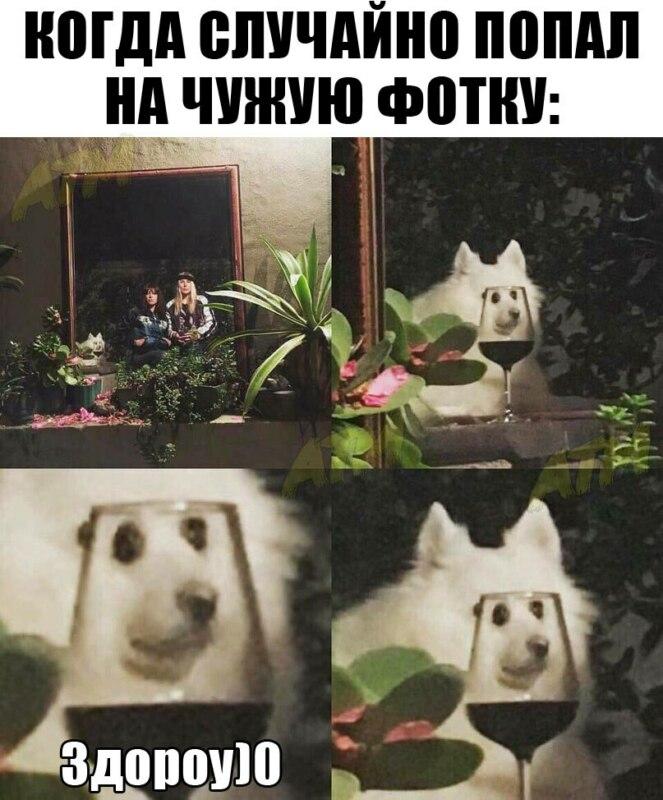 здороу мем