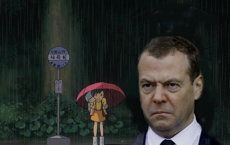 найти фото с медведевым под дождем стал