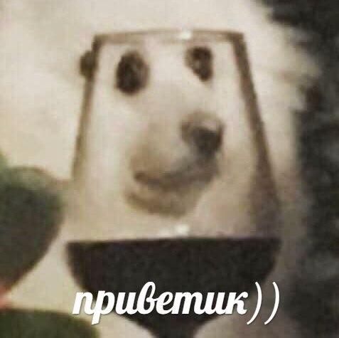 мем собака с бокалом вина