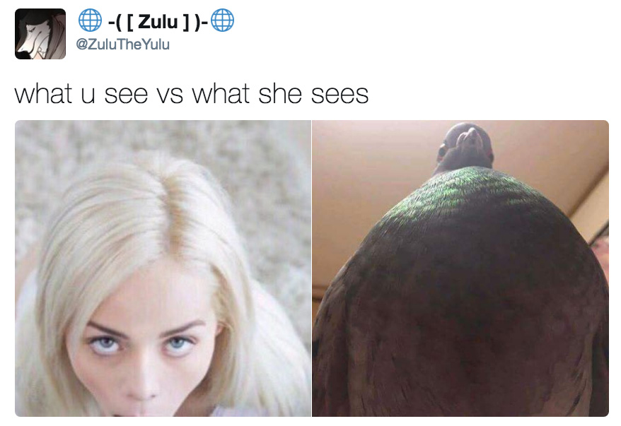 What You See Vs What She Sees Girl