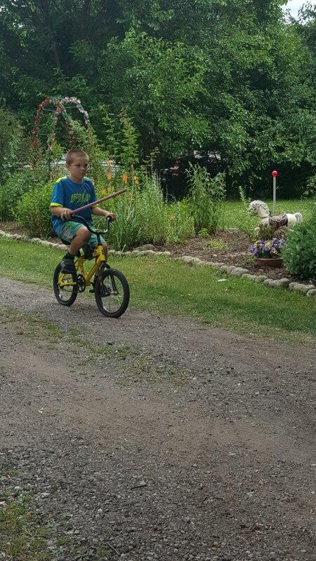 вставялет палку в колесо велосипеда