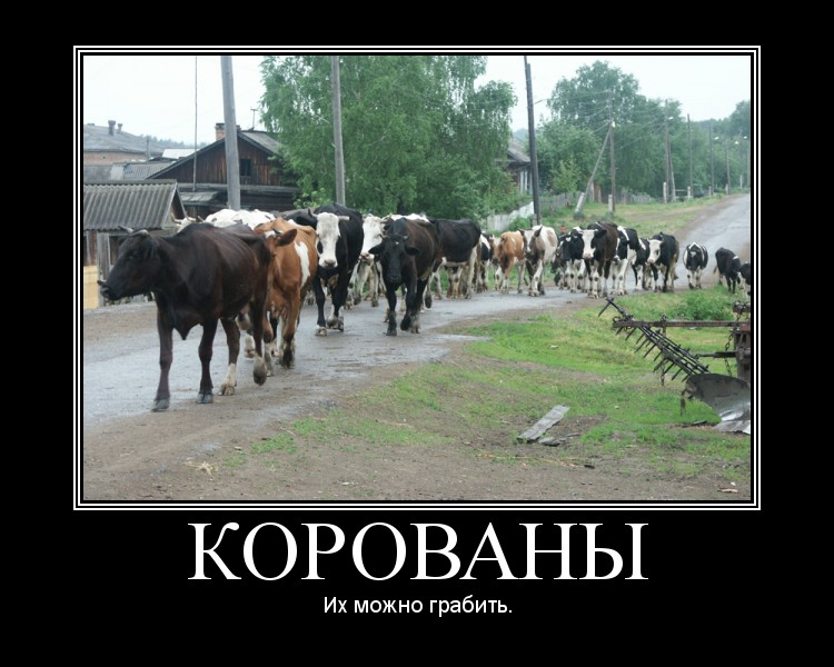 Корованы