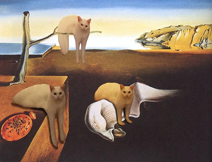 жидкий кот (4)