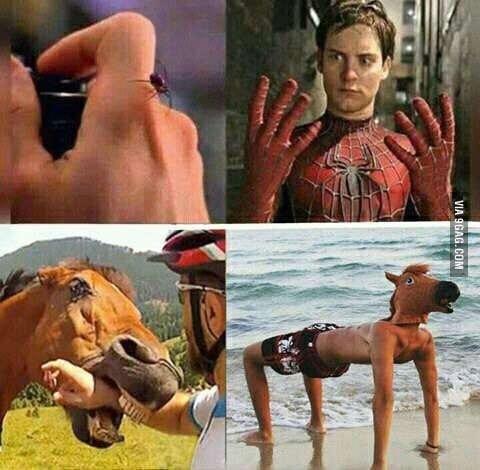 когда укусила лошадь