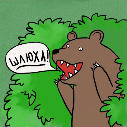 картинка медведь где шлюхи