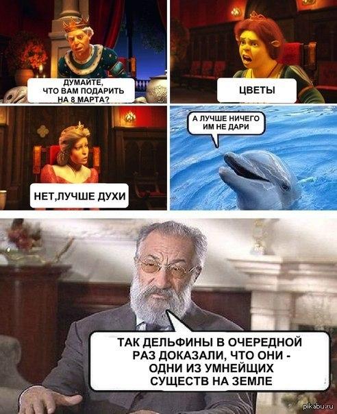 мемы про дельфинов (1)