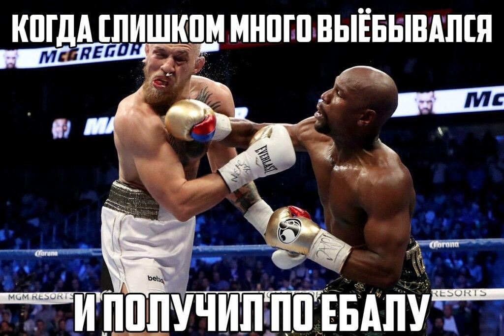 мемы про макгрегора и мейвезера (2)