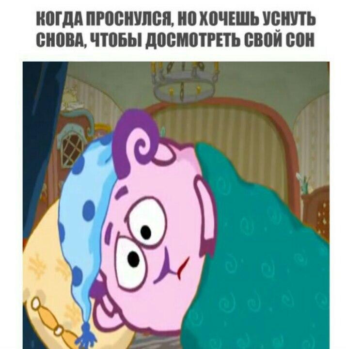 мемы со смешариками (8)