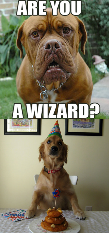 ты волшебник?