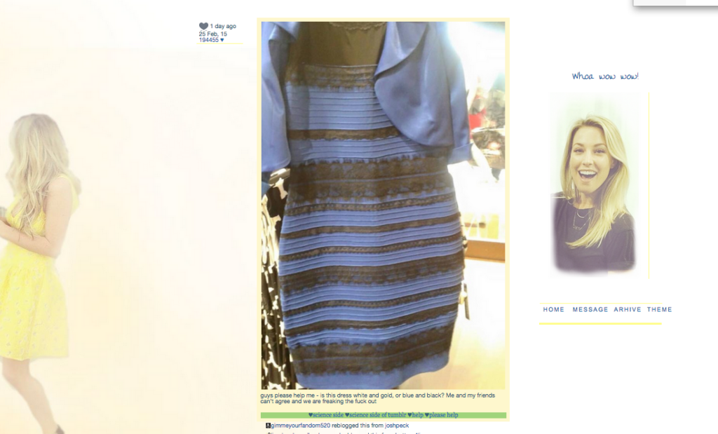 the dress (1)