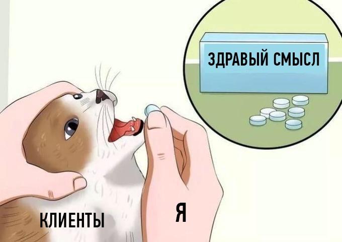 кот с таблетками мем (2)