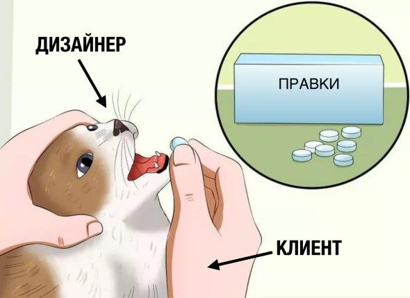 кот с таблетками мем (3)