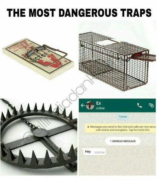 Самые опасные ловушки мем, мем Самые опасные ловушки, Самые опасные ловушки, Самые опасные ловушки для человека мем, мем Самые опасные ловушки для человека, Самые опасные ловушки для человека, The most dangerous traps,