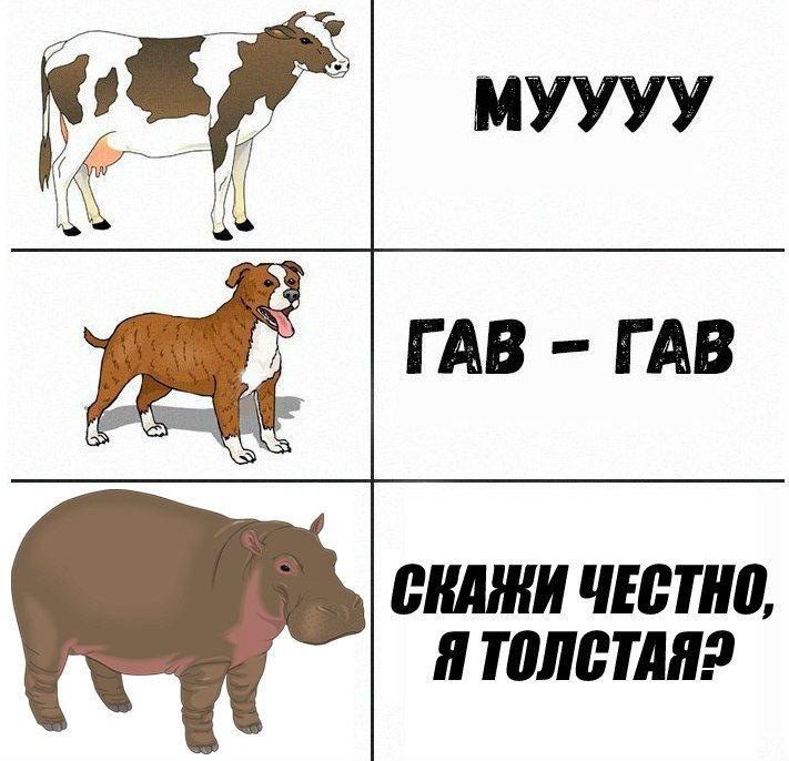 https://m.pikabu.ru/story/kakie_zvuki_izdayut_zhivotnyie_5199671