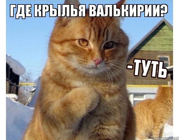 Котик Туть