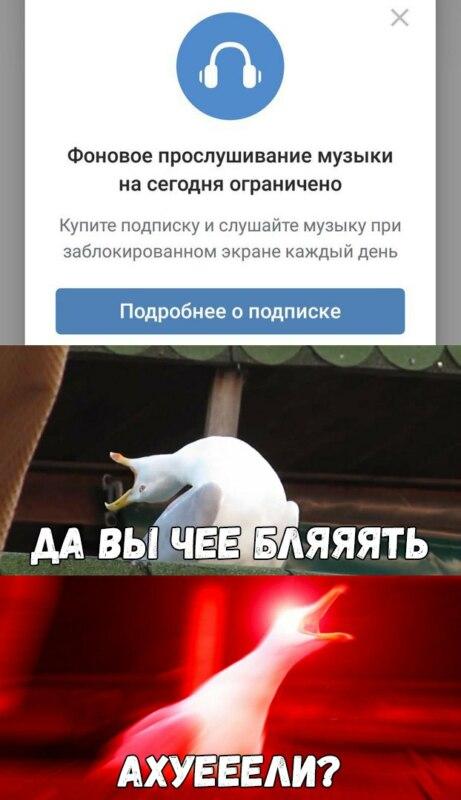 мемы про вконтакте (11)
