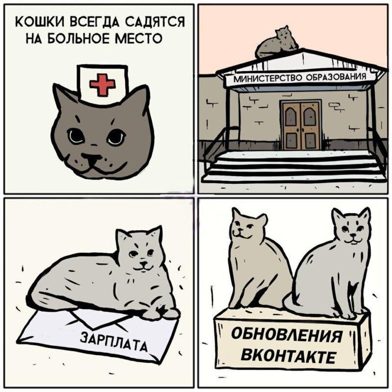 мемы про вконтакте (4)