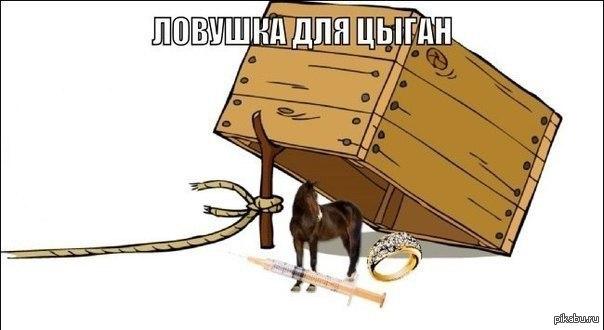 мем как меня похитить (5)
