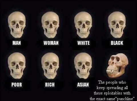 мем сравнение черепов