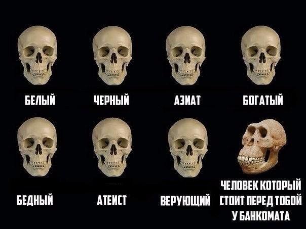 мем с черепами (2)