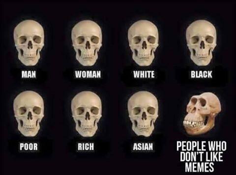 мем с черепами (3)