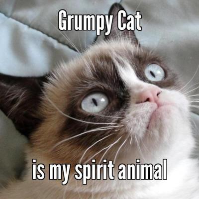 Мое тотемное животное, Spirit animal, тотемное животное, мем тотемное животное, тотемное животное мем