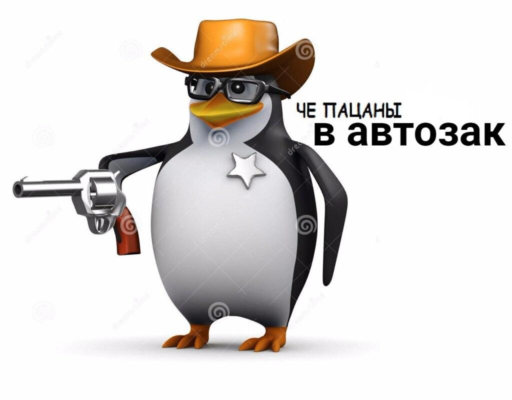 пингвин в очках мем (4)