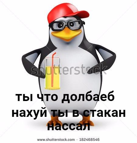 пингвин в очках мем (6)
