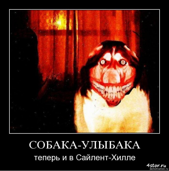 собака улыбака (2)