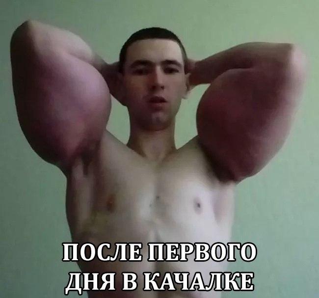 кирилл-терешин-синтол-10
