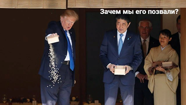 трамп кормит рыбок (6)