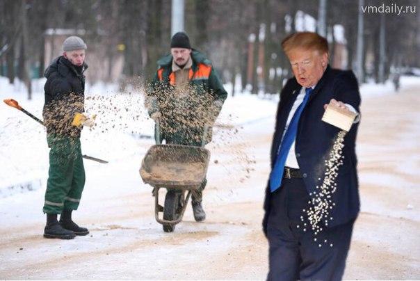 трамп кормит рыбок (9)