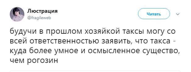 рогозин и такса2