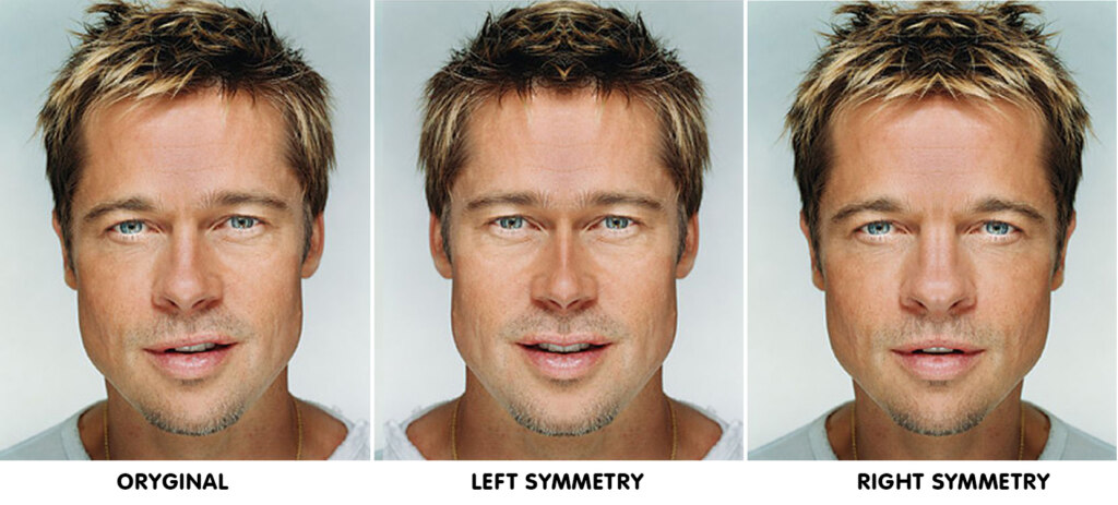 Фото лица человека симметричное времена