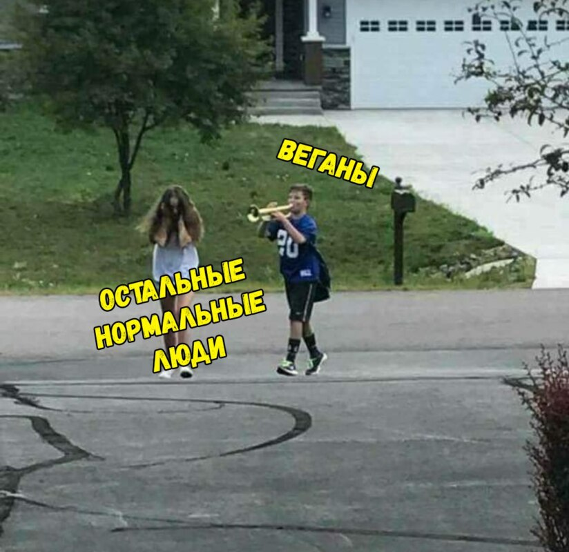 Главные мемы февраля 2018