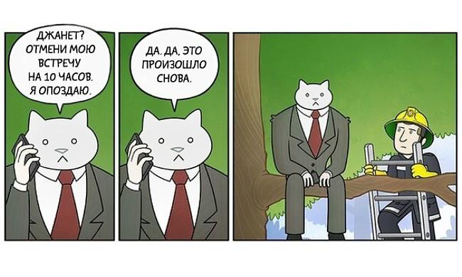 Кот-бизнесмен
