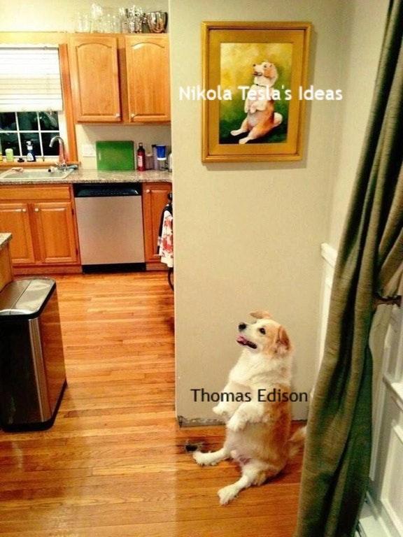 собака сидит как на картине