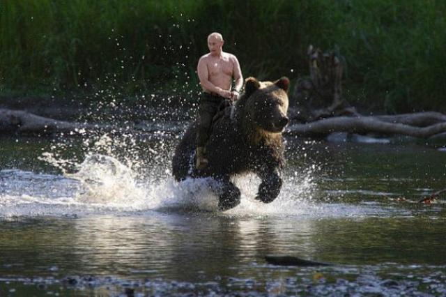 фотожабы с путиным на медведе