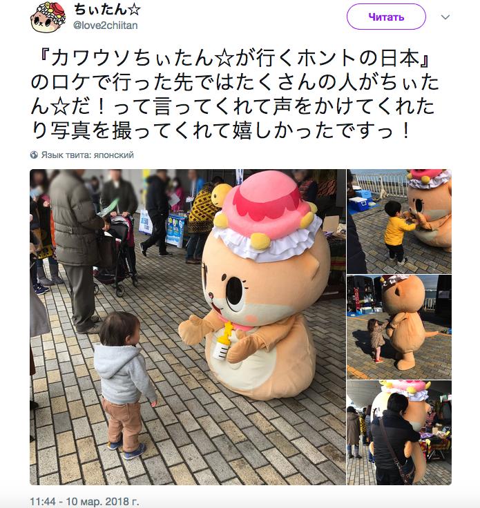 Милая выдра покорила японский интернет. Через год у нее появился маскот