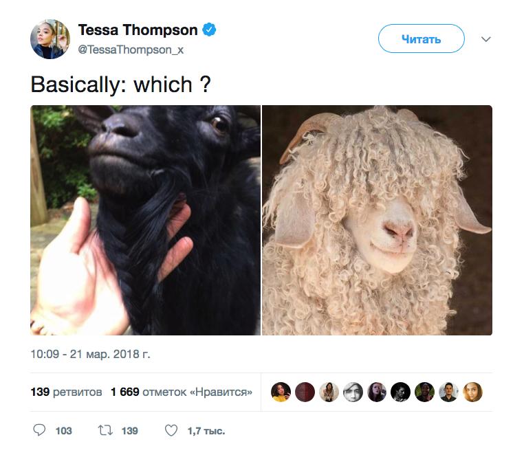 Тесса Томпсон выбирает козу