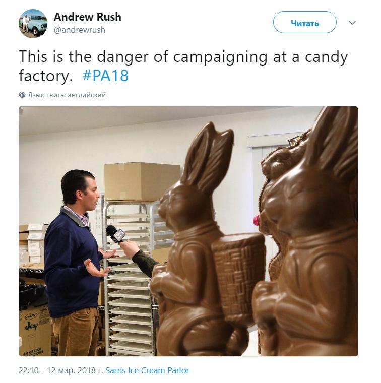 трамп и зайцы