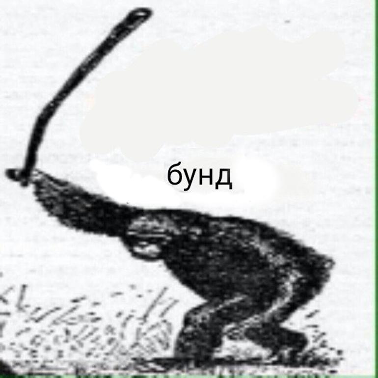 мемы обезьяна бунд