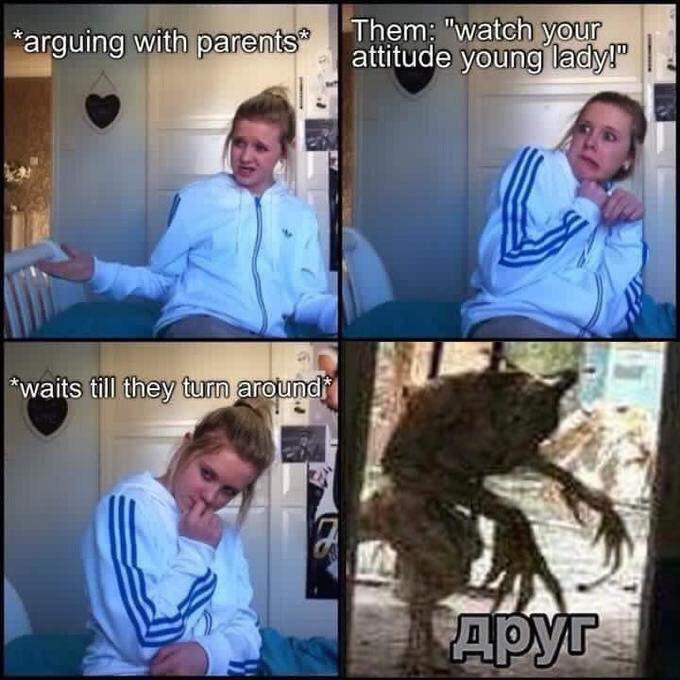 ДРУГ мем