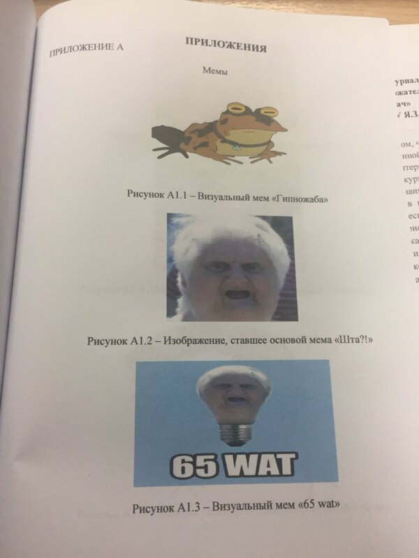 диплом про мемы